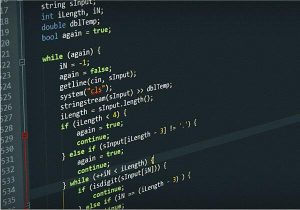 servizio sviluppo software